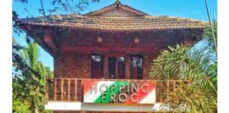 hopping frog Hostel